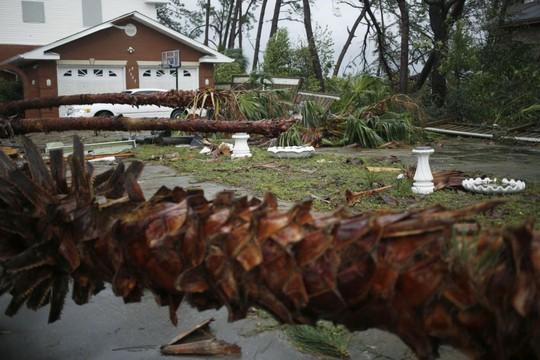 """Mỹ: Cận cảnh """"bão khủng khiếp nhất 100 năm"""" càn quét bang Florida - Ảnh 7."""