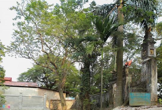 Lý lịch chi tiết của bảo vật có giá 50 tỉ ở chùa Vĩnh Phúc - Ảnh 12.