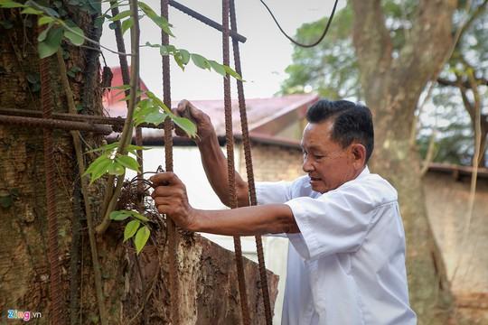 Lý lịch chi tiết của bảo vật có giá 50 tỉ ở chùa Vĩnh Phúc - Ảnh 5.