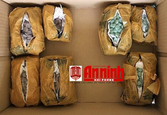 Những trái bưởi chết người từ TP HCM gửi ra Hải Phòng - Ảnh 2.