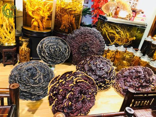 Cao Nguyên Food - Mang sản vật quý từ núi rừng Tây Nguyên đến gần với người tiêu dùng thành phố - Ảnh 6.