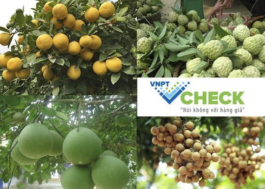 VNPT Check: Nâng tầm nông sản Việt - Ảnh 1.