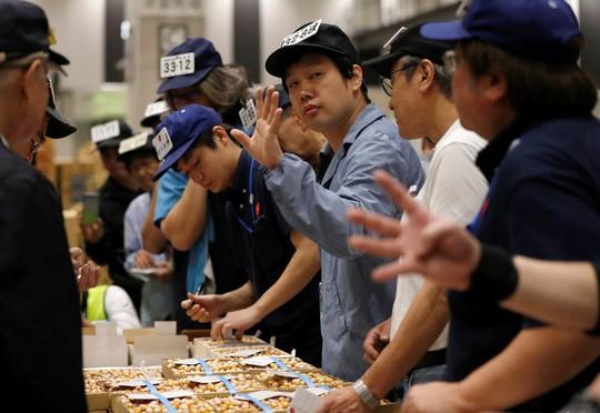 Vì sao chợ cá lớn nhất thế giới ở Nhật gây tranh cãi khi dời địa điểm? - Ảnh 11.