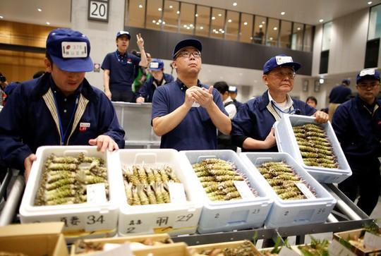 Vì sao chợ cá lớn nhất thế giới ở Nhật gây tranh cãi khi dời địa điểm? - Ảnh 12.