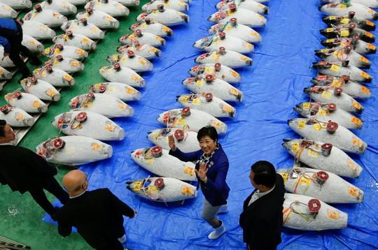Vì sao chợ cá lớn nhất thế giới ở Nhật gây tranh cãi khi dời địa điểm? - Ảnh 14.