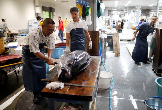 Vì sao chợ cá lớn nhất thế giới ở Nhật gây tranh cãi khi dời địa điểm? - Ảnh 8.