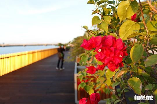 Cận cảnh cầu đi bộ bằng gỗ lim dọc sông Hương - Ảnh 6.