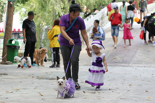Độc đáo Lễ hội cún cưng Sài Gòn - Ảnh 5.