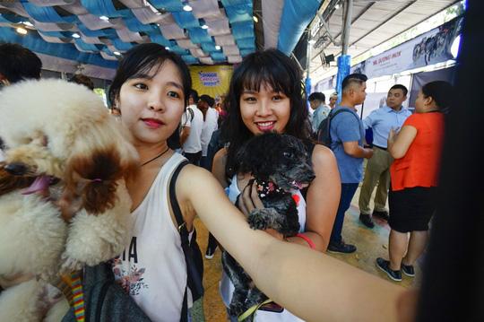 Độc đáo Lễ hội cún cưng Sài Gòn - Ảnh 2.