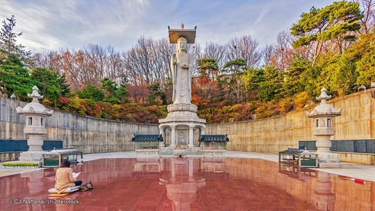 9 tượng Phật kỳ vĩ trên thế giới - Ảnh 18.