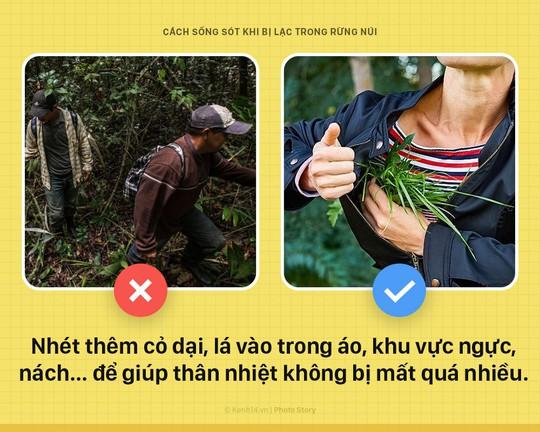 Mẹo sinh tồn ai cũng nên biết nếu bị lạc trong rừng - Ảnh 4.