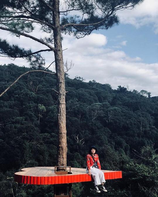 """Dân du lịch háo hức """"check-in"""" cây thông độc đáo ở Đà Lạt - Ảnh 1."""