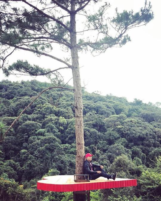 """Dân du lịch háo hức """"check-in"""" cây thông độc đáo ở Đà Lạt - Ảnh 7."""