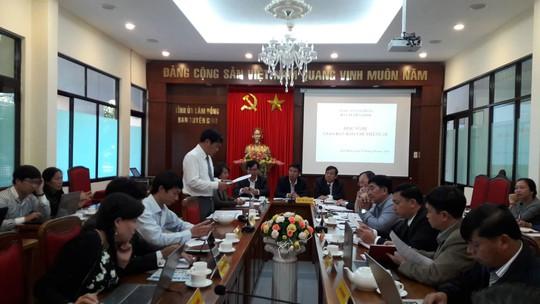 Vụ phá rừng: Sở TT-TT Lâm Đồng có thực hiện đúng chức năng? - Ảnh 1.