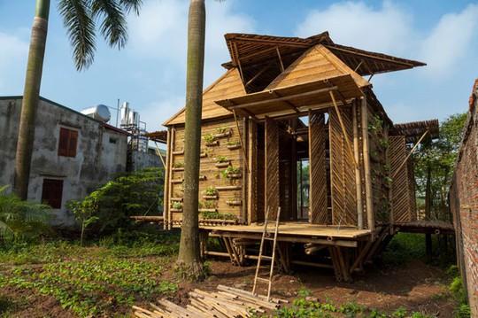 Ngôi nhà tre Việt 50 triệu giành giải thưởng thiết kế của Đức - Ảnh 6.