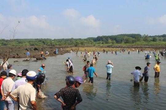 Cá mắc kẹt đầy chân đập hồ thủy điện Trị An - Ảnh 4.