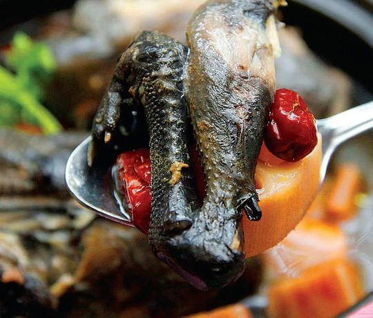 Lẩu cá hồi, rau mầm đá hấp dẫn du khách đến Sa Pa mùa này - Ảnh 6.