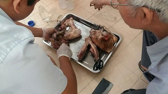 Từ vụ sán lợn ở Bình Phước: Báo động nhiễm ký sinh trùng! - ảnh 2