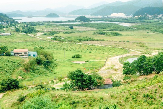 Đề xuất tháo gỡ thị trường đất nông nghiệp - Ảnh 1.