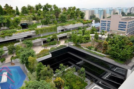Các đô thị chuẩn Singapore có gì? - Ảnh 4.