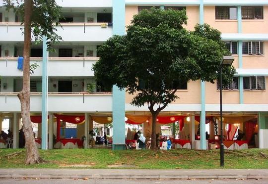 Các đô thị chuẩn Singapore có gì? - Ảnh 8.