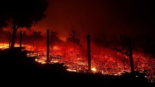 Cháy rừng California: Hơn 600 người mất tích, tăng gấp đôi chỉ sau 1 đêm - Ảnh 8.