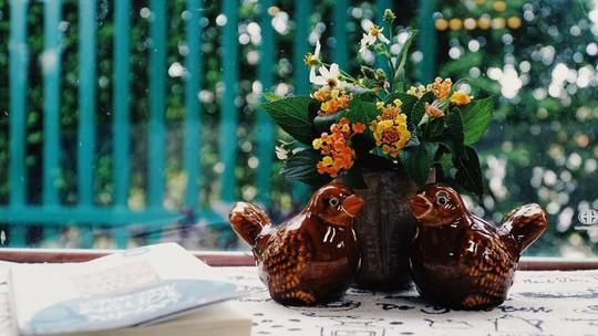 Quán cà phê đưa cả khu vườn vào trong nhà ở Đà Lạt - Ảnh 6.