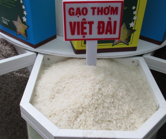 22 doanh nghiệp Trung Quốc nhập khẩu gạo đến Việt Nam