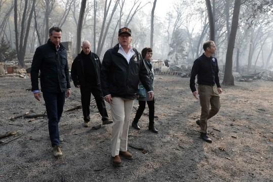 Nói Phần Lan cào cỏ khô để ngăn cháy rừng, ông Trump bị chế nhạo - Ảnh 1.