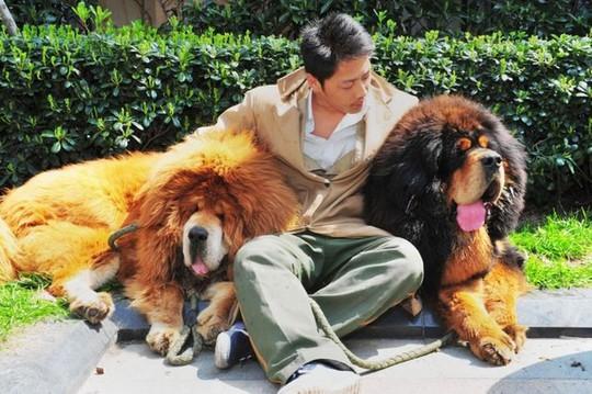 9 điều bình thường tại Trung Quốc gây sốc cho khách Tây - Ảnh 8.