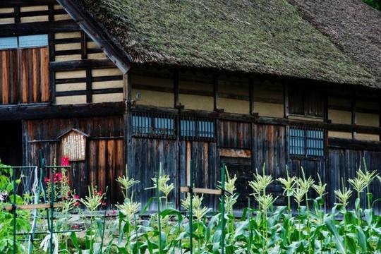 Những ngôi nhà đẹp tựa tranh vẽ ở nông thôn Nhật Bản - Ảnh 20.