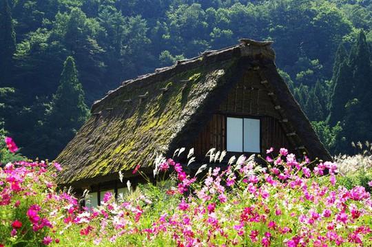 Những ngôi nhà đẹp tựa tranh vẽ ở nông thôn Nhật Bản - Ảnh 3.