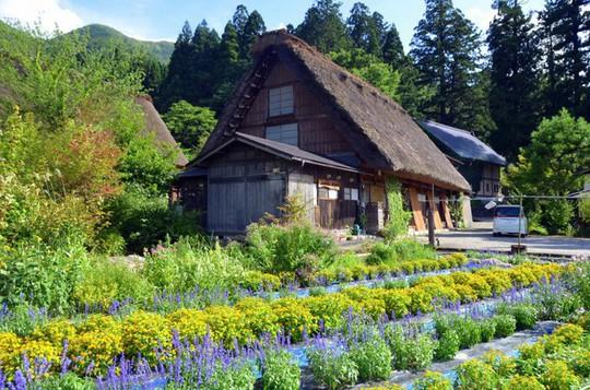 Những ngôi nhà đẹp tựa tranh vẽ ở nông thôn Nhật Bản - Ảnh 4.