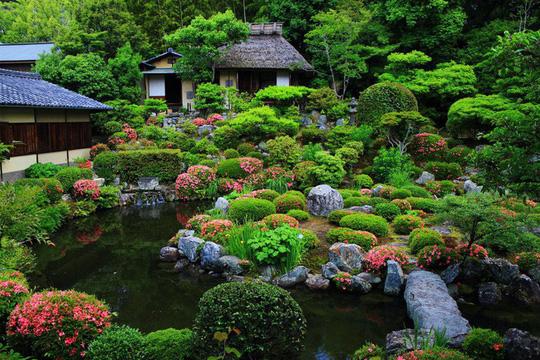 Những ngôi nhà đẹp tựa tranh vẽ ở nông thôn Nhật Bản - Ảnh 8.
