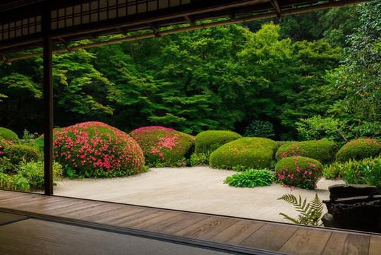 Những ngôi nhà đẹp tựa tranh vẽ ở nông thôn Nhật Bản - Ảnh 9.