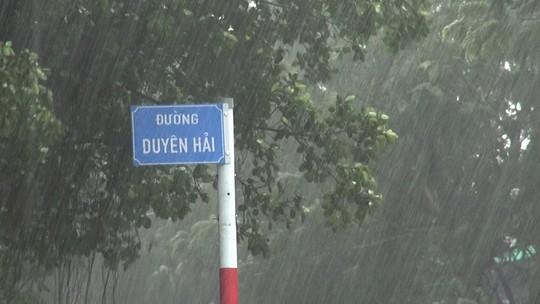 Ảnh hưởng bão số 9, Cần Giờ mưa lớn, cây xanh bật gốc, nhà tốc mái - Ảnh 5.