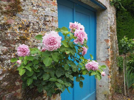 Những ngôi nhà thơ mộng đẹp như cổ tích ở làng quê nước Pháp - Ảnh 1.