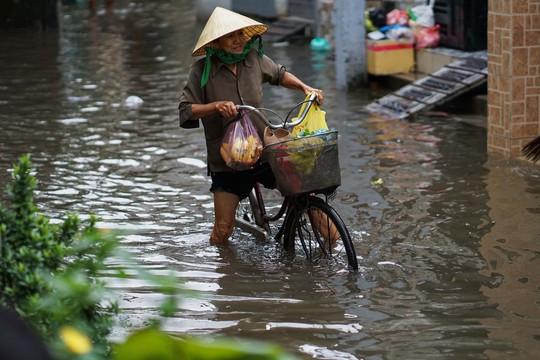 Cận cảnh ngập lụt trong nhà, ngoài ngõ ở TP HCM - Ảnh 16.