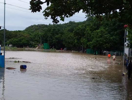 Solid rain, Khanh Hoa and Lam Dong isolated in many places - Photo 4.