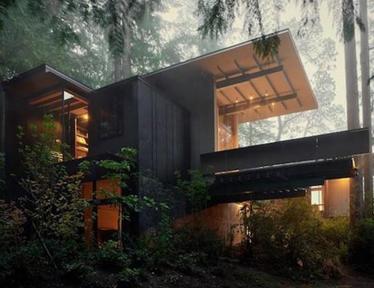 Biệt thự 60 năm giữa rừng gây choáng vì đẹp và hiện đại - Ảnh 1.