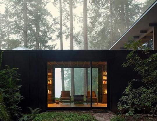 Biệt thự 60 năm giữa rừng gây choáng vì đẹp và hiện đại - Ảnh 2.