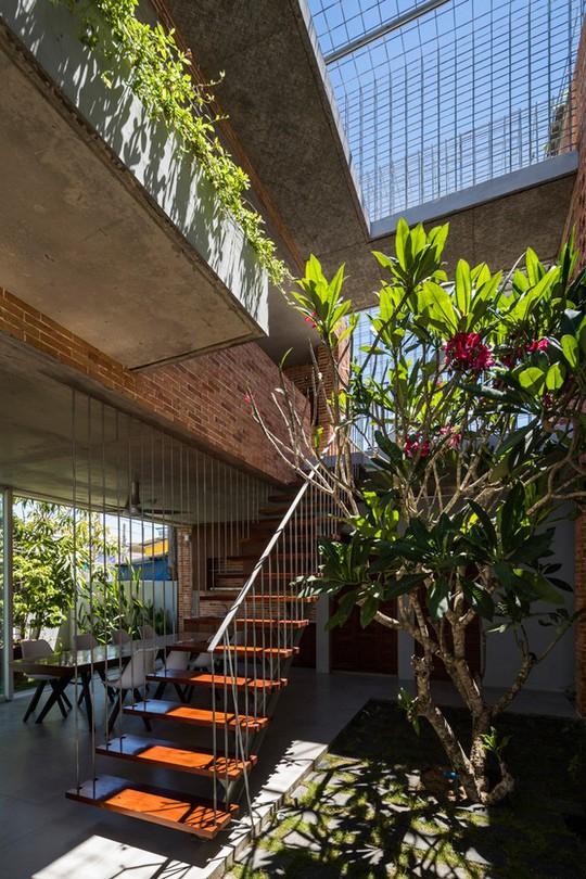 Nhà 2 tầng có 8 mảnh vườn ở Bình Thuận - Ảnh 11.