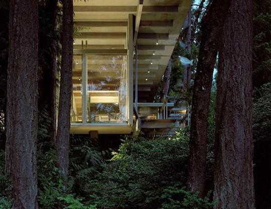 Biệt thự 60 năm giữa rừng gây choáng vì đẹp và hiện đại - Ảnh 13.