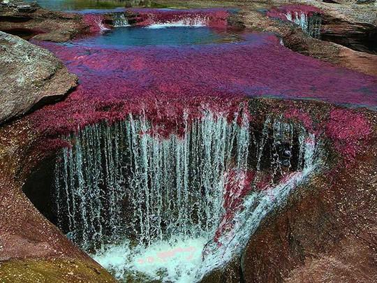 Khó tin nhưng có thật: Sông có 5 màu biến đổi theo mùa - Ảnh 5.