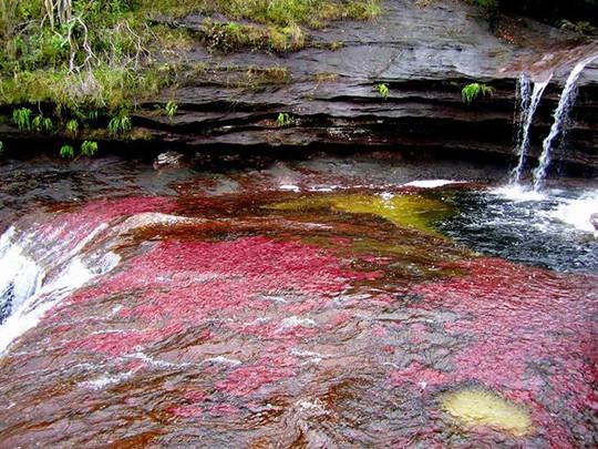 Khó tin nhưng có thật: Sông có 5 màu biến đổi theo mùa - Ảnh 7.