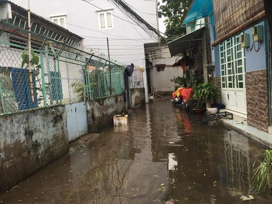 Sáng 26-11, TPHCM nhiều nơi vẫn ngập sâu, rác, nhánh cây gãy la liệt - Ảnh 13.