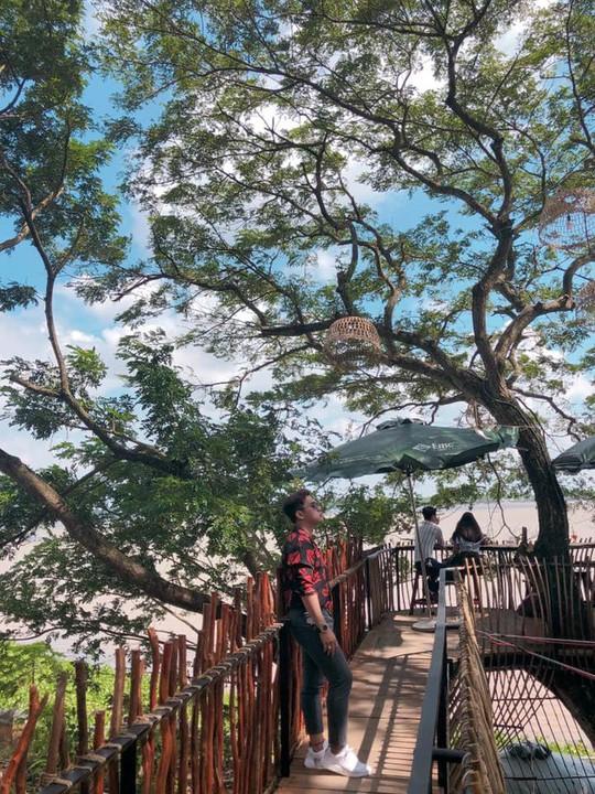 Sống ảo trong tiệm cà phê trên cây ở Cần Thơ - Ảnh 7.