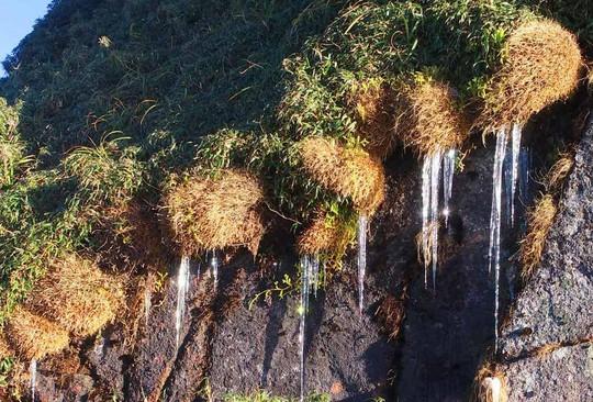 Ngắm hoa băng lung linh kỳ thú trên đỉnh Fansipan - Ảnh 3.