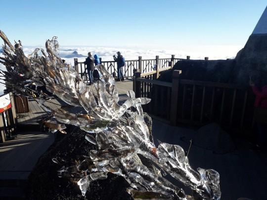 Ngắm hoa băng lung linh kỳ thú trên đỉnh Fansipan - Ảnh 12.