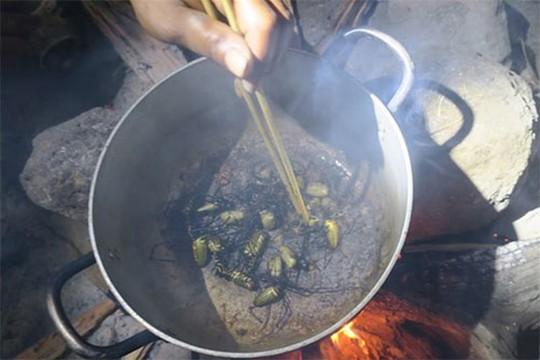 Rùng mình món nhện rừng đặc sản ở Bình Thuận - Ảnh 4.